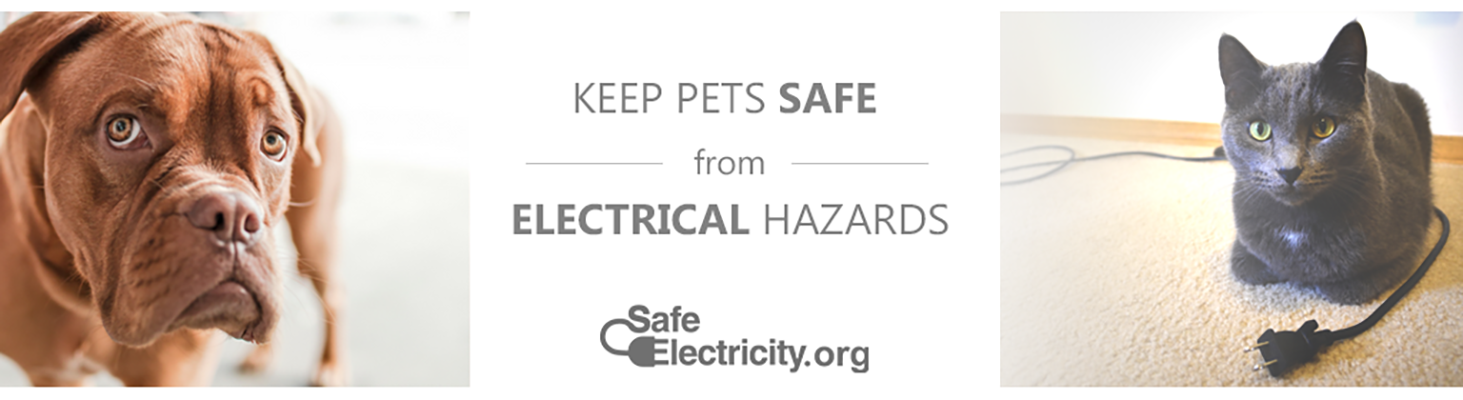Keep your pets safe with electricity.